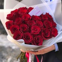25 красных роз  ↑=50 см
