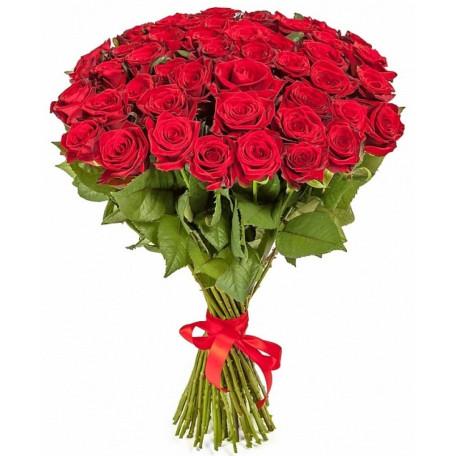 51 красная роза ↑=80см