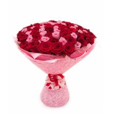 75 красно-розовых роз