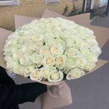 101 белая роза ↑=50 см