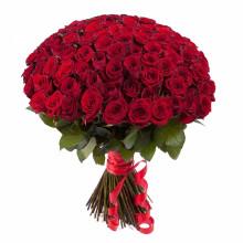 101 красная роза ↑=50 см